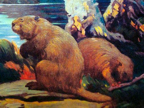Apariencia y características del castor gigante